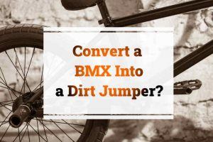Read more about the article Can You Turn a BMX Into a Dirt Jumper?